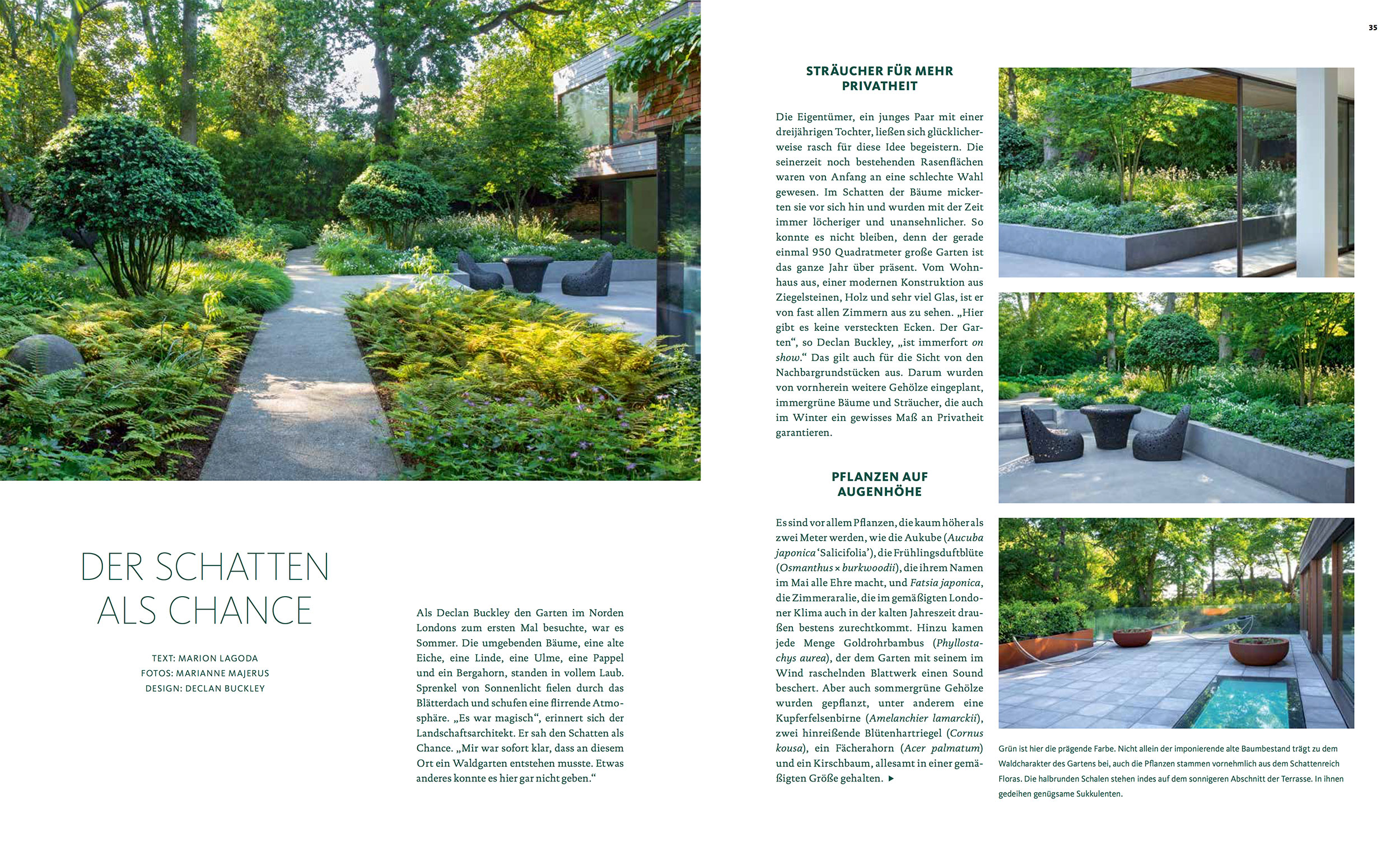 Garten Design Inspiration Elm Walk Buckley Design Associates